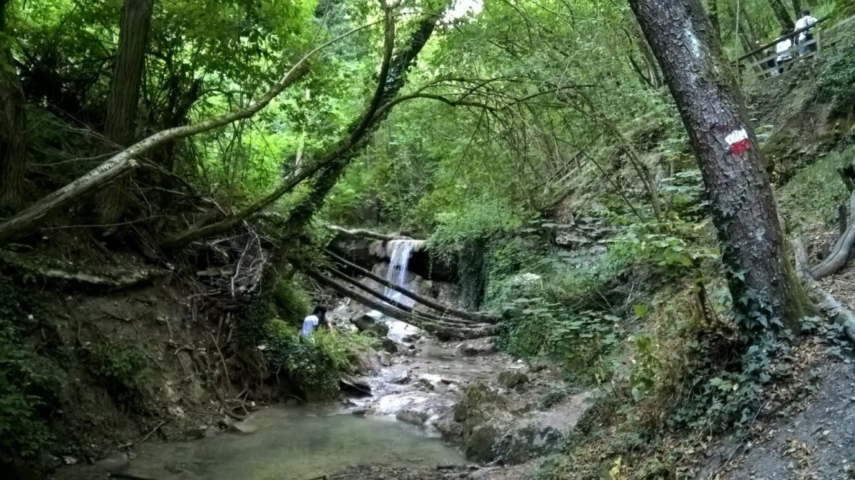 Il giardino sul fiume attivit e pratica delle discipline naturali - Il giardino sul fiume ...